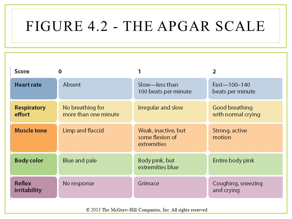 © 2013 The McGraw-Hill Companies, Inc. All rights reserved. FIGURE 4.2 - THE APGAR SCALE
