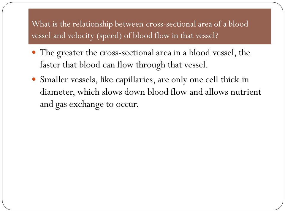 What is the relationship between cross-sectional area of a blood vessel and velocity (speed) of blood flow in that vessel? The greater the cross-secti