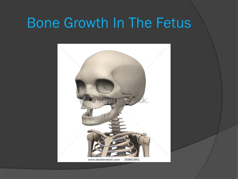 Intramembranous Bones In The Fetus  The flat bones of the skull are INTRAMEMBRANOUS BONES.
