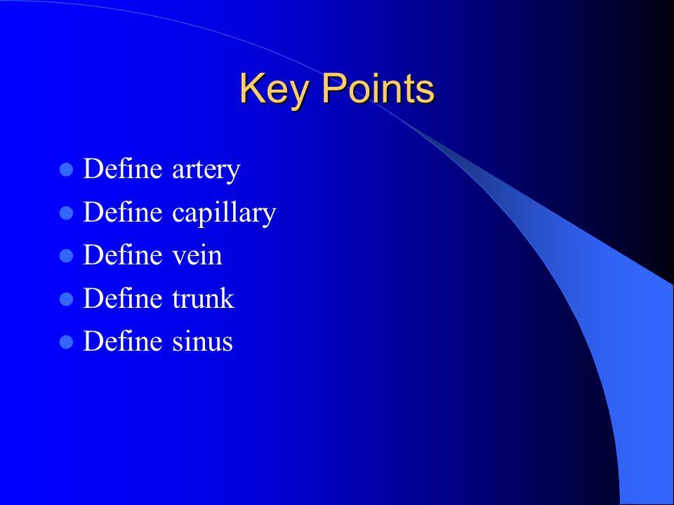 Key Points Define artery Define capillary Define vein Define trunk Define sinus