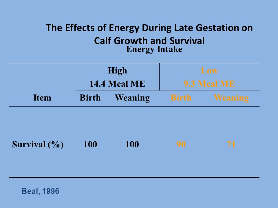 The Effects of Energy During Late Gestation on Calf Growth and Survival Energy Intake High 14.4 Mcal ME Low 9.3 Mcal ME ItemBirthWeaningBirthWeaning S