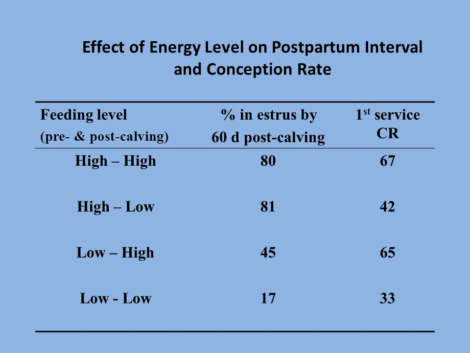 Effect of Energy Level on Postpartum Interval and Conception Rate Feeding level (pre- & post-calving) % in estrus by 60 d post-calving 1 st service CR