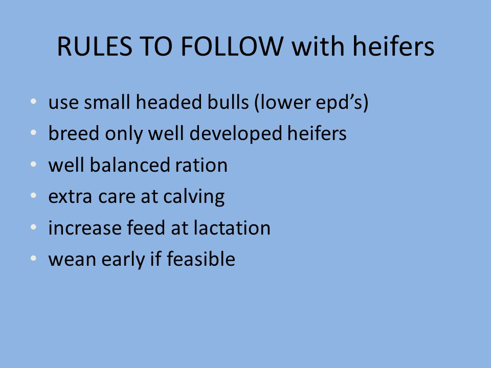 RULES TO FOLLOW with heifers use small headed bulls (lower epd's) breed only well developed heifers well balanced ration extra care at calving increas