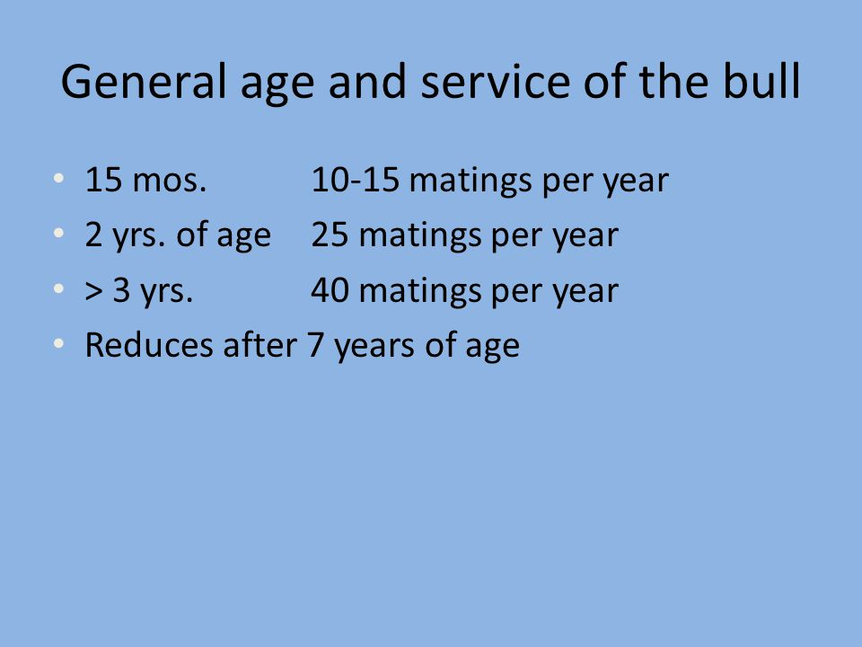 General age and service of the bull 15 mos. 10-15 matings per year 2 yrs. of age 25 matings per year > 3 yrs.40 matings per year Reduces after 7 years