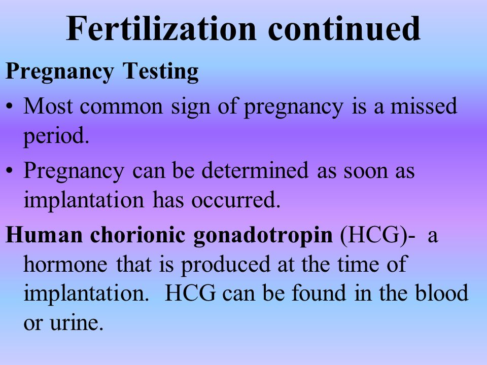 Fertilization continued Pregnancy Testing Most common sign of pregnancy is a missed period.