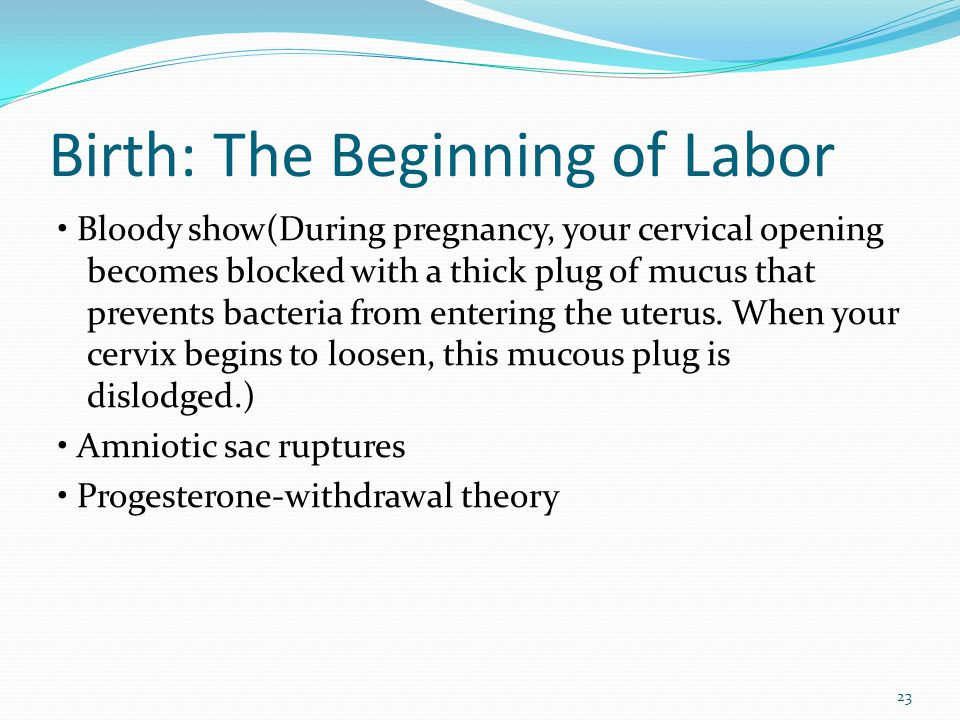 Birth: The Beginning of Labor Bloody show(During pregnancy, your cervical opening becomes blocked with a thick plug of mucus that prevents bacteria fr
