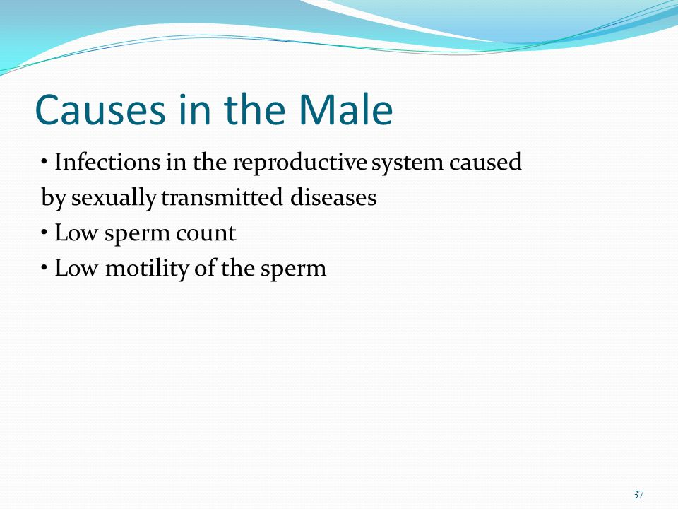 Causes in the Male Infections in the reproductive system caused by sexually transmitted diseases Low sperm count Low motility of the sperm 37