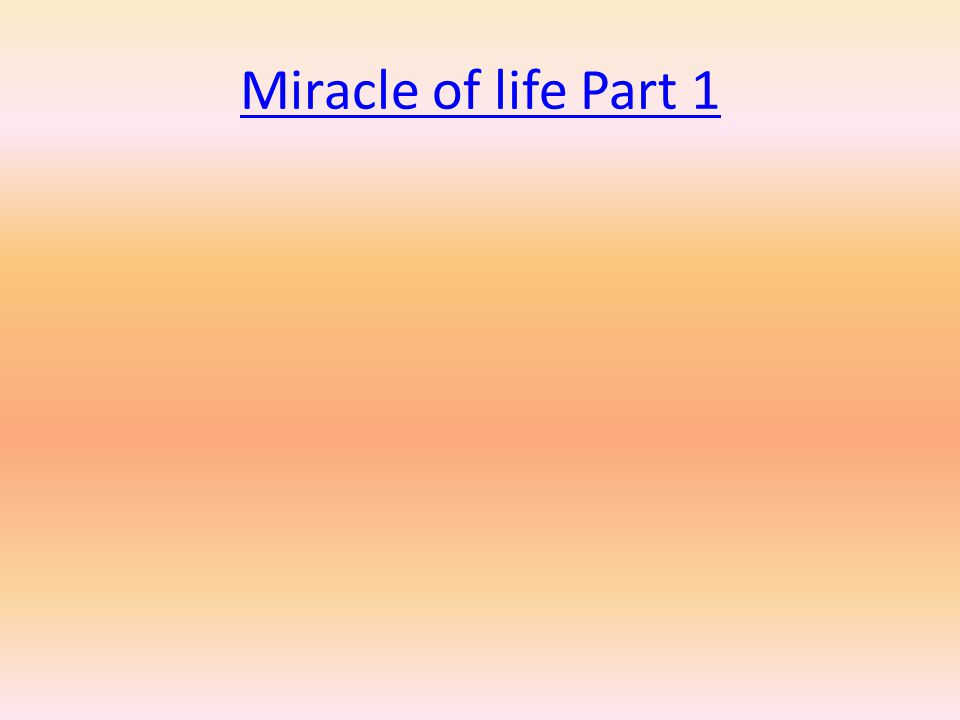 Miracle of life Part 1