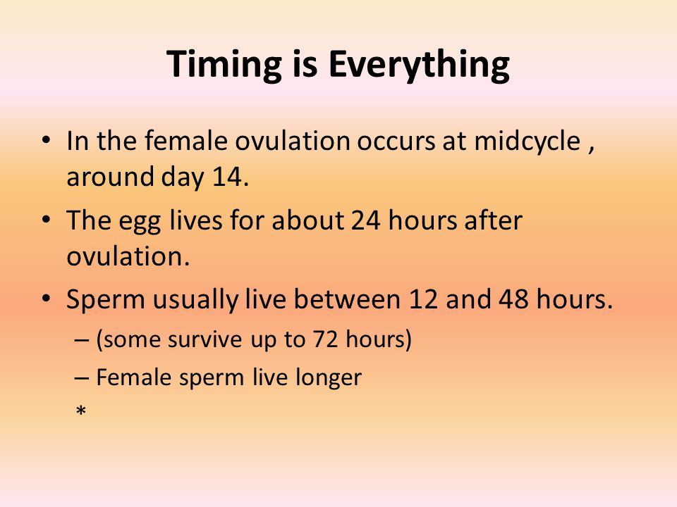 Timing is Everything In the female ovulation occurs at midcycle, around day 14.