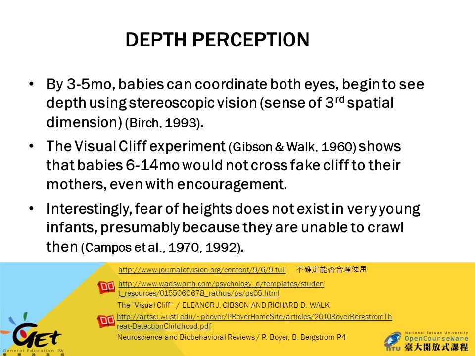 DEPTH PERCEPTION By 3-5mo, babies can coordinate both eyes, begin to see depth using stereoscopic vision (sense of 3 rd spatial dimension) (Birch, 1993).