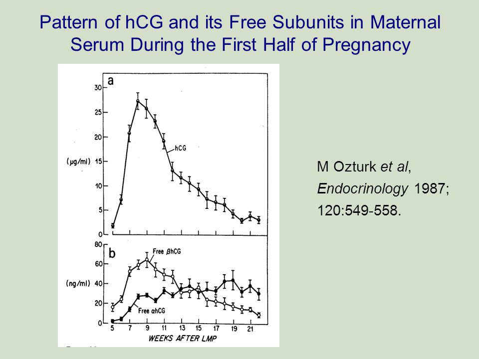 Pattern of hCG and its Free Subunits in Maternal Serum During the First Half of Pregnancy M Ozturk et al, Endocrinology 1987; 120:549-558.