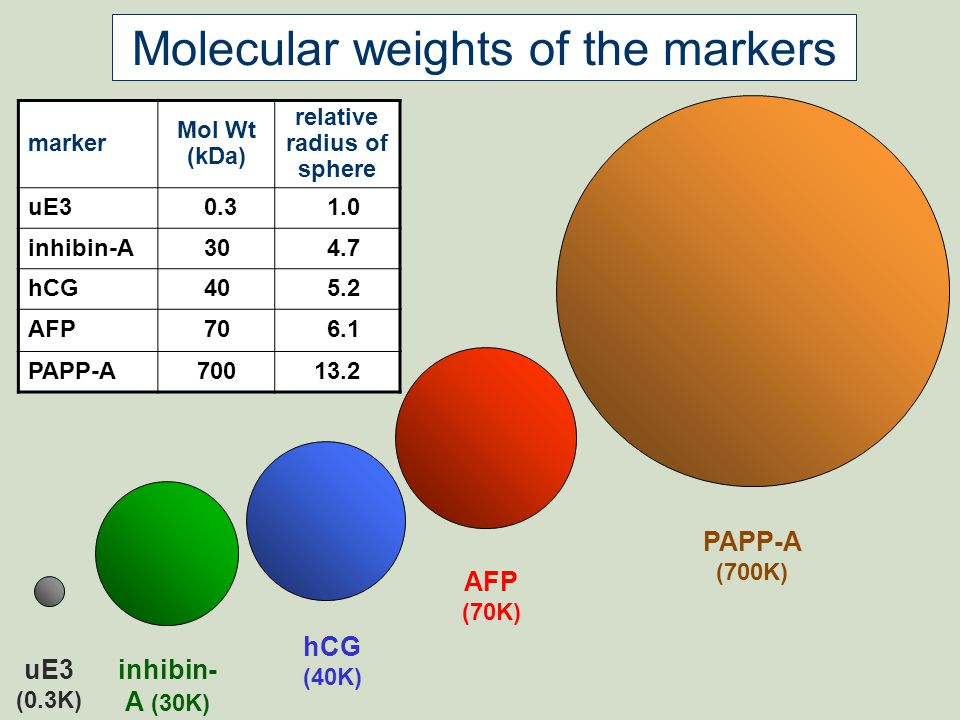 PAPP-A (700K) AFP (70K) hCG (40K) inhibin- A (30K) uE3 (0.3K) Molecular weights of the markers marker Mol Wt (kDa) relative radius of sphere uE3 0.3 1