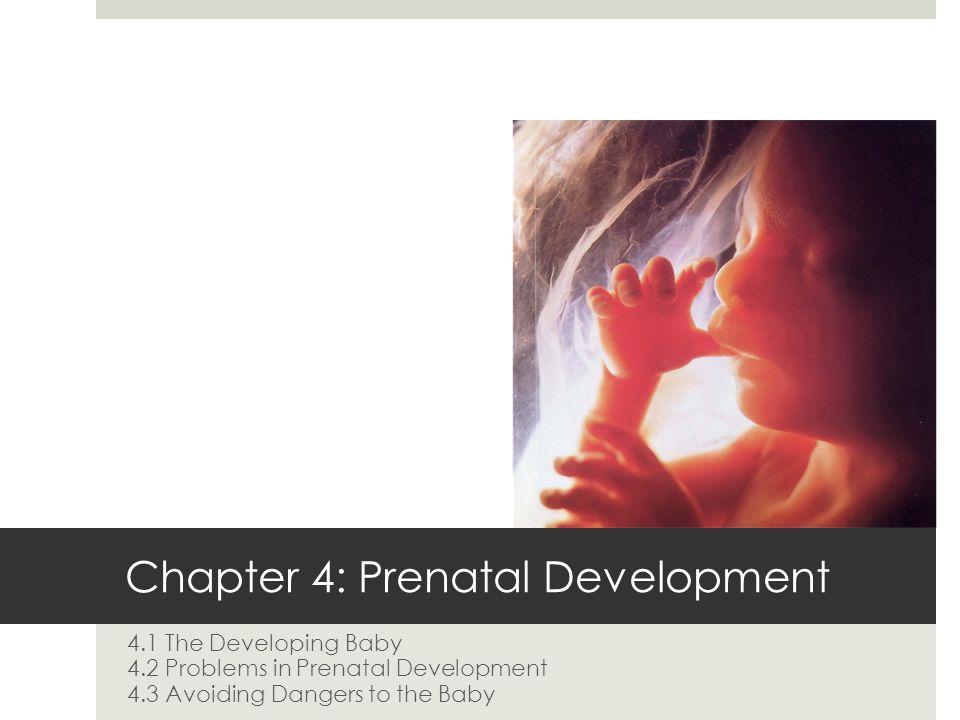 Chapter 4 Objectives List the methods of family planning Outline what occurs during each of the three stages of prenatal development Contrast miscarriage and stillbirth Identify how ten major birth defects can be diagnosed Summarize the hazards that alcohol and other drugs pose to prenatal development Assess why environmental hazards must be avoided during pregnancy Describe how a fetus can be affected by certain illnesses the mother may contract