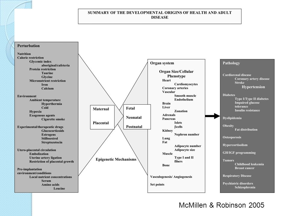 McMillen & Robinson 2005