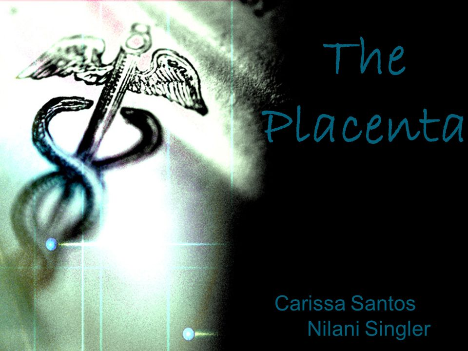 Carissa Santos Nilani Singler The Placenta