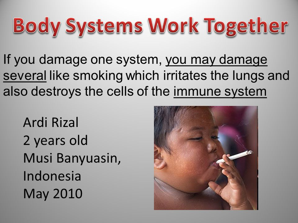 If you damage one system, you may damage several like smoking which irritates the lungs and also destroys the cells of the immune system Ardi Rizal 2 years old Musi Banyuasin, Indonesia May 2010 2