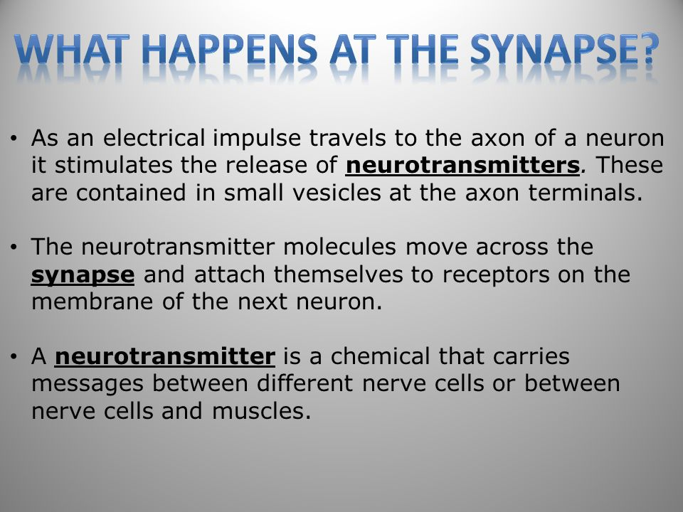 55 As an electrical impulse travels to the axon of a neuron it stimulates the release of neurotransmitters.