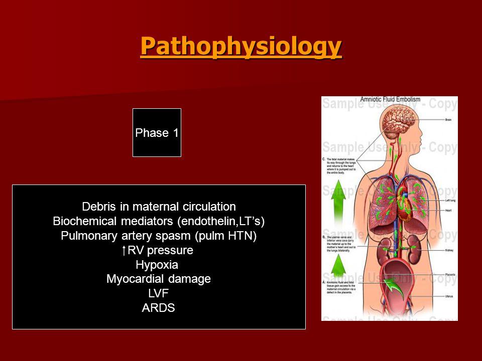 Pathophysiology Debris in maternal circulation Biochemical mediators (endothelin,LT's) Pulmonary artery spasm (pulm HTN)  RV pressure Hypoxia Myocardial damage LVF ARDS Phase 1