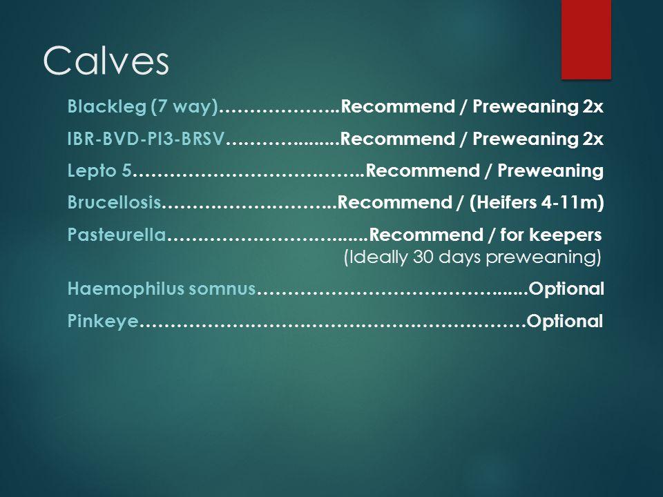 Calves Blackleg (7 way)………………..Recommend / Preweaning 2x IBR-BVD-PI3-BRSV…………........Recommend / Preweaning 2x Lepto 5………………………………..Recommend / Prewea