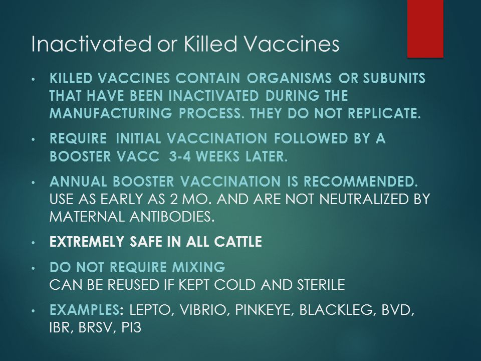 Inactivated or Killed Vaccines KILLED VACCINES CONTAIN ORGANISMS OR SUBUNITS THAT HAVE BEEN INACTIVATED DURING THE MANUFACTURING PROCESS. THEY DO NOT