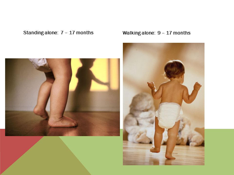 Muscle control not fully developed until 2 years of age Bowel movements may cause fear in child Not unusual to still use diapers at three years of age, especially if any other delays exist TOILETING SKILLS