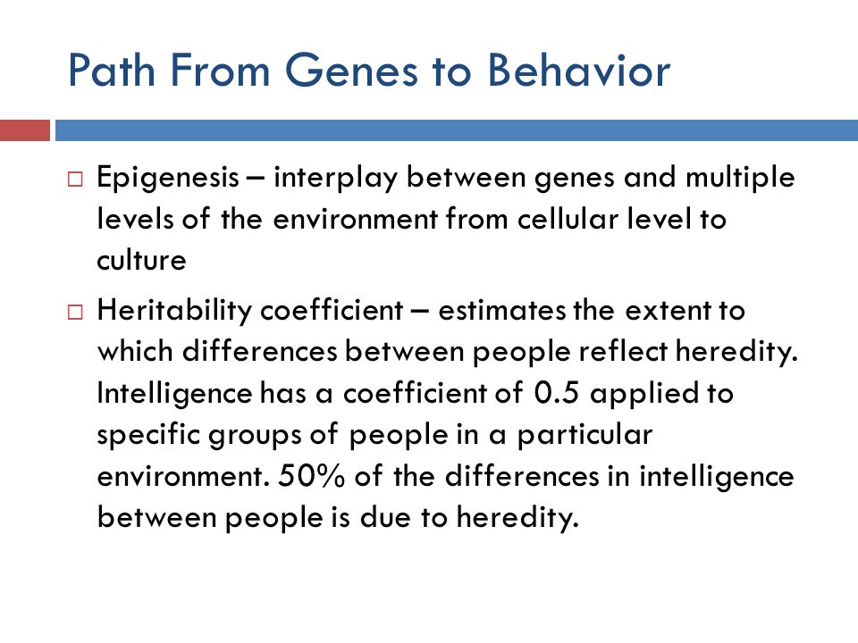 Path From Genes to Behavior  Epigenesis – interplay between genes and multiple levels of the environment from cellular level to culture  Heritabilit
