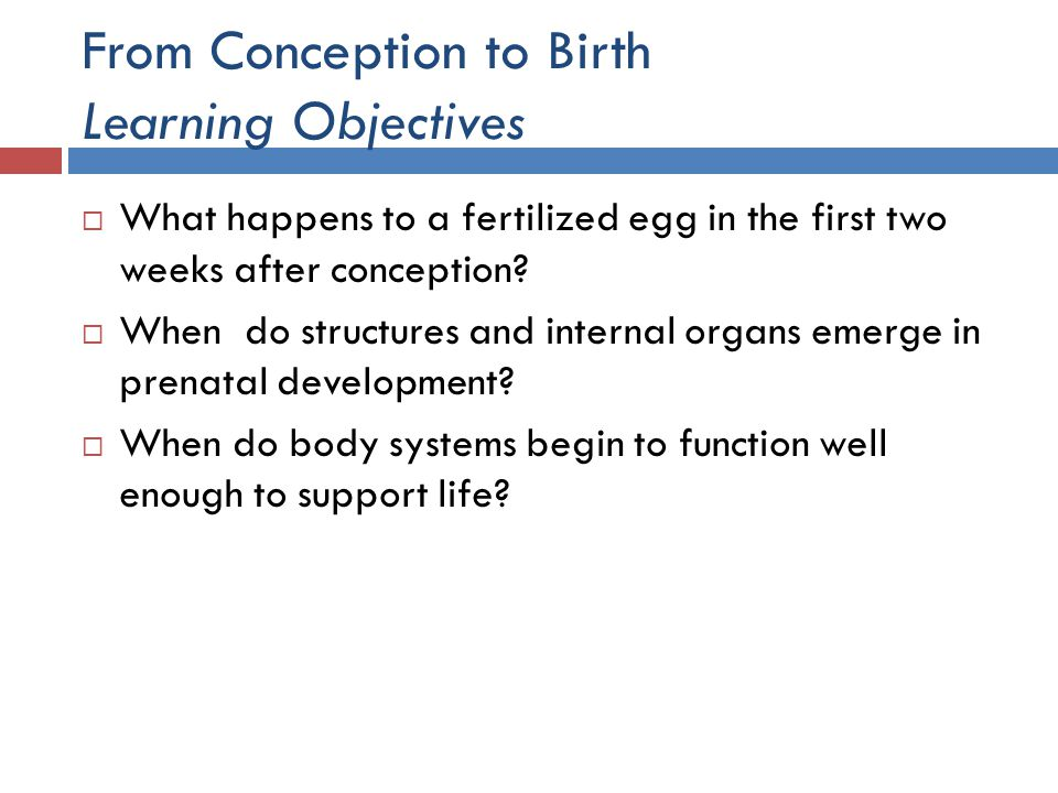 From Conception to Birth Learning Objectives  What happens to a fertilized egg in the first two weeks after conception?  When do structures and inte