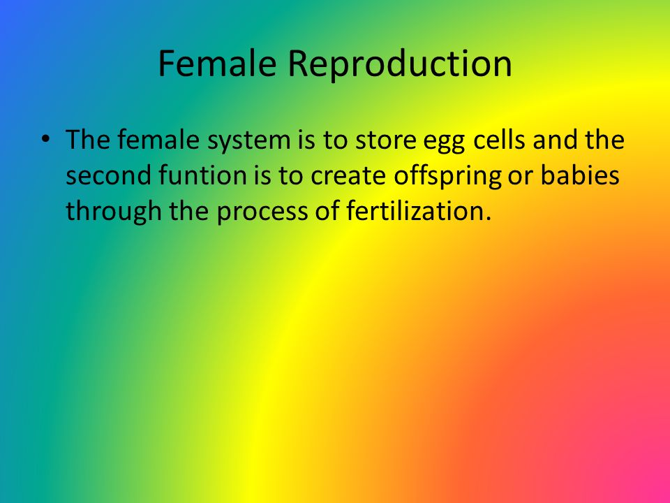 Female Reproduction The female system is to store egg cells and the second funtion is to create offspring or babies through the process of fertilization.