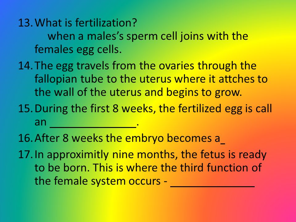 13.What is fertilization? when a males's sperm cell joins with the females egg cells. 14.The egg travels from the ovaries through the fallopian tube t