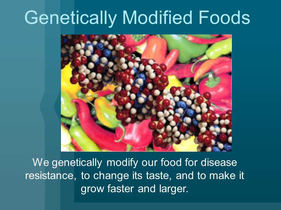 Genetically Modified Foods We genetically modify our food for disease resistance, to change its taste, and to make it grow faster and larger.