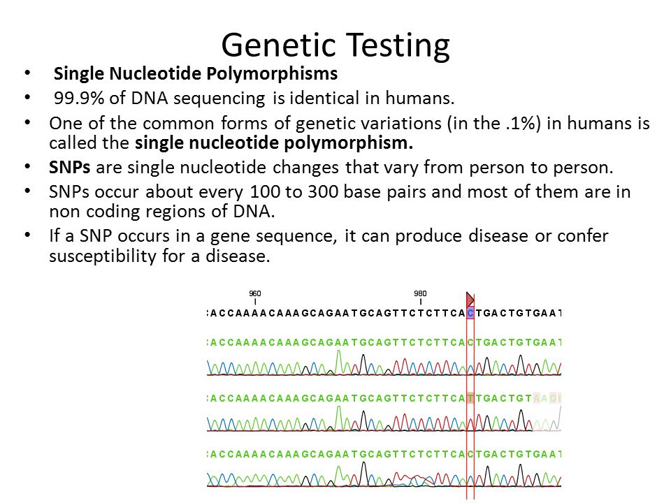 Genetic Testing Single Nucleotide Polymorphisms 99.9% of DNA sequencing is identical in humans. One of the common forms of genetic variations (in the.