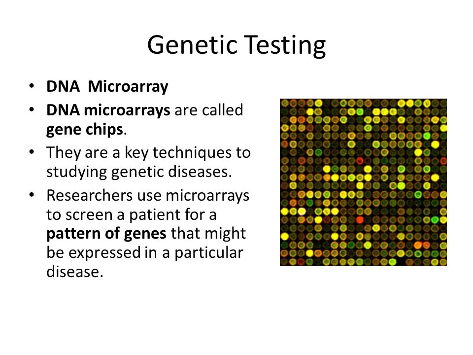 Genetic Testing DNA Microarray DNA microarrays are called gene chips. They are a key techniques to studying genetic diseases. Researchers use microarr