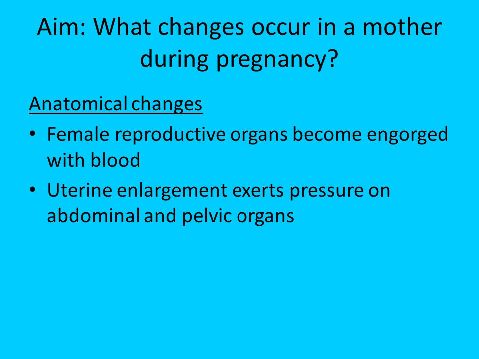 Aim: What changes occur in a mother during pregnancy? Anatomical changes Female reproductive organs become engorged with blood Uterine enlargement exe