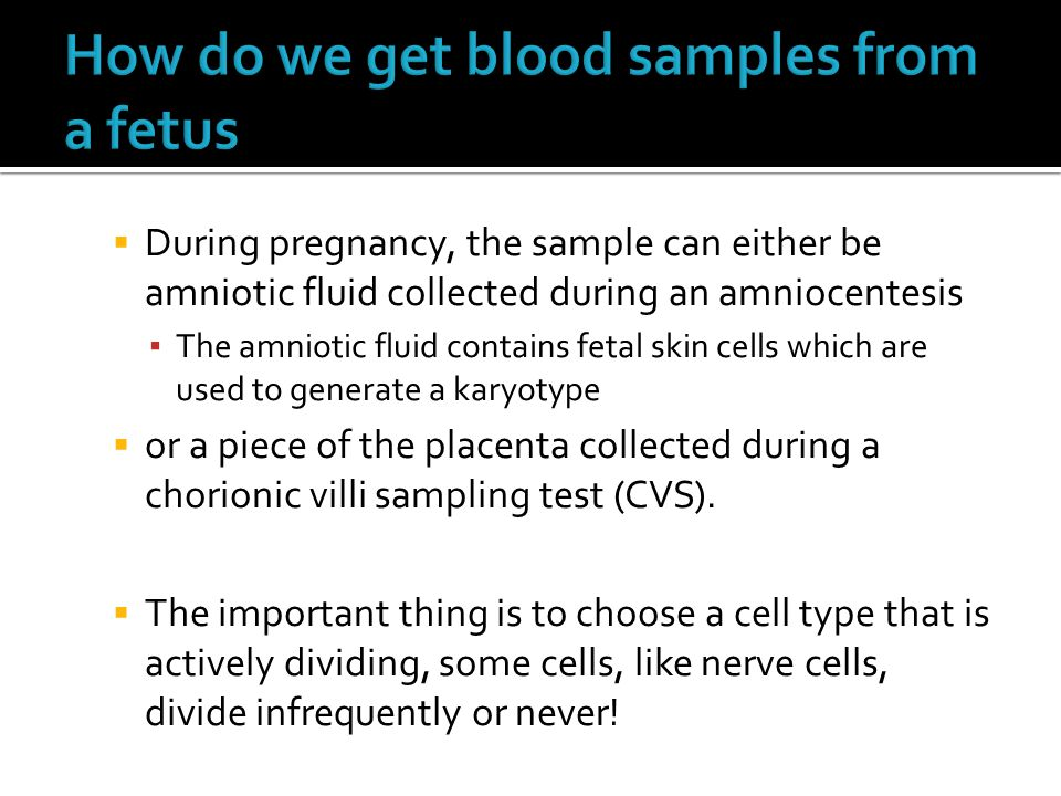  During pregnancy, the sample can either be amniotic fluid collected during an amniocentesis ▪ The amniotic fluid contains fetal skin cells which are