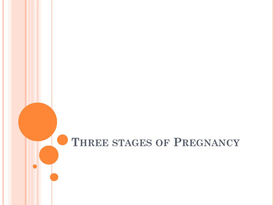 T HREE STAGES OF P REGNANCY