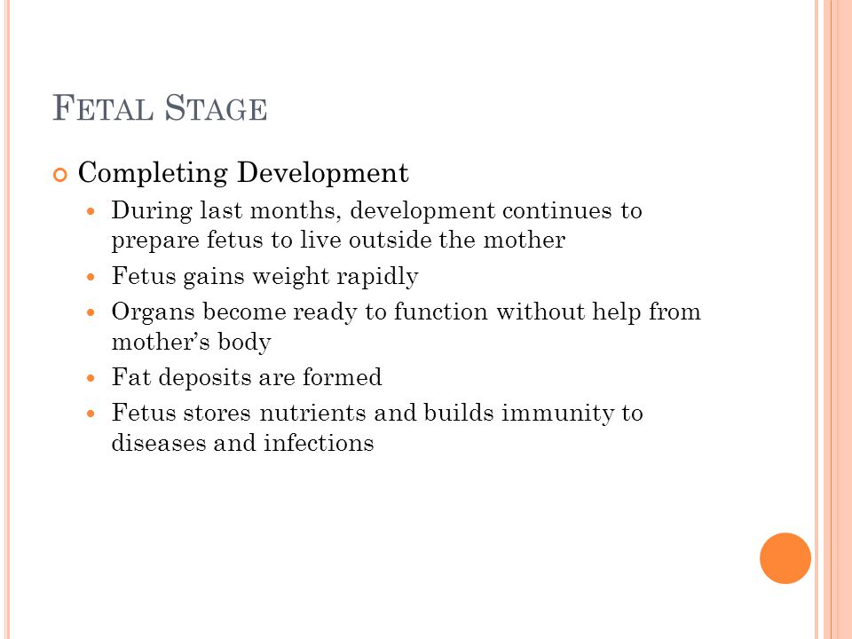 F ETAL S TAGE Completing Development During last months, development continues to prepare fetus to live outside the mother Fetus gains weight rapidly
