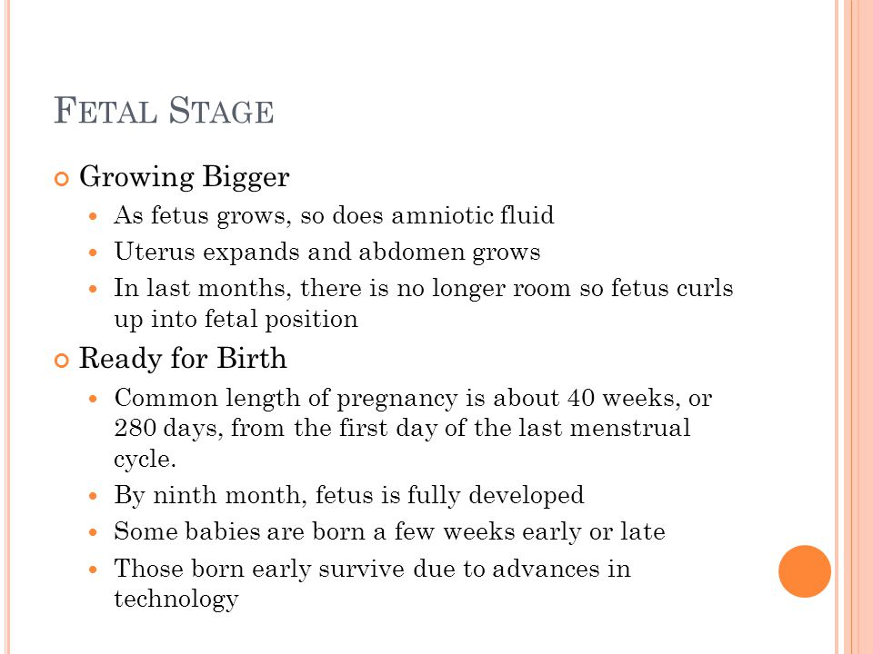 F ETAL S TAGE Growing Bigger As fetus grows, so does amniotic fluid Uterus expands and abdomen grows In last months, there is no longer room so fetus