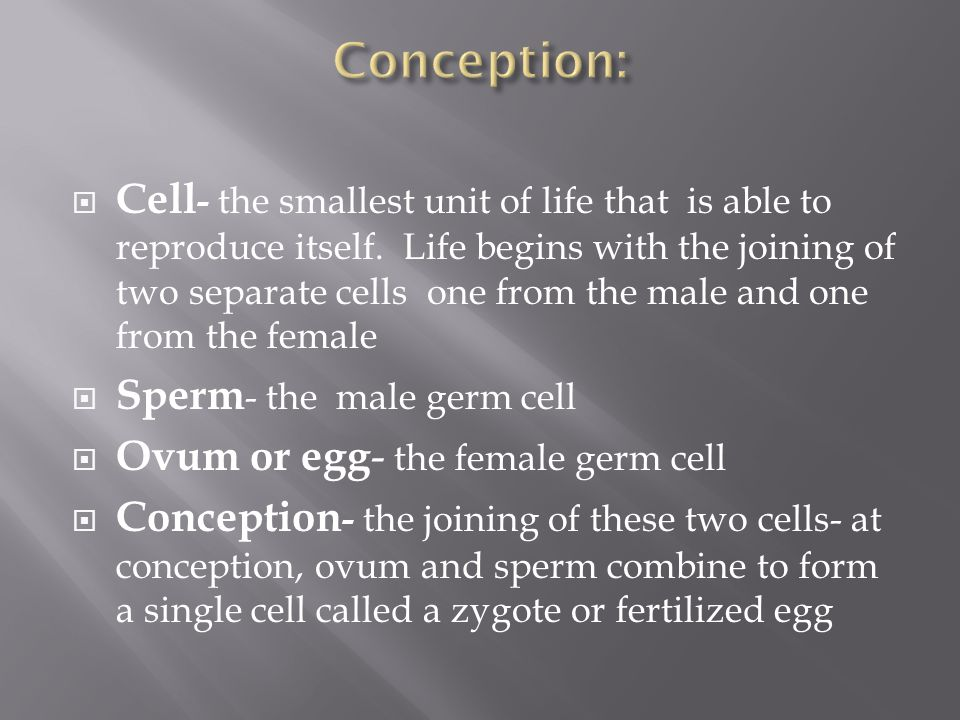  Cell - the smallest unit of life that is able to reproduce itself.