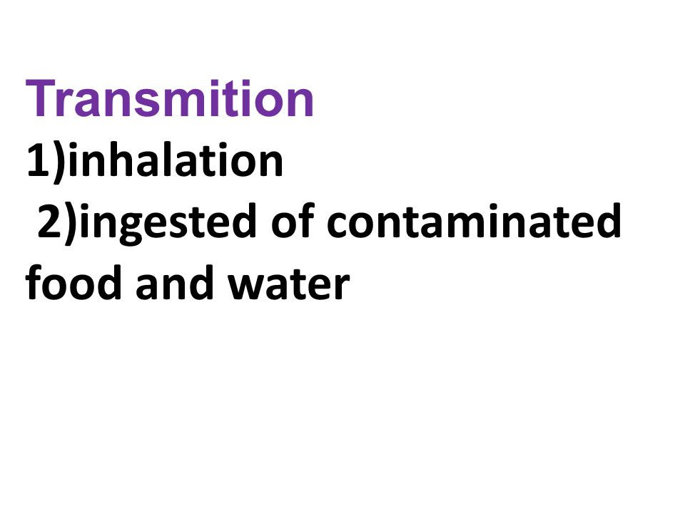 Transmition 1)inhalation 2)ingested of contaminated food and water