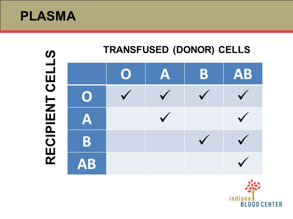 TRANSFUSED (DONOR) CELLS RECIPIENT CELLS PLASMA