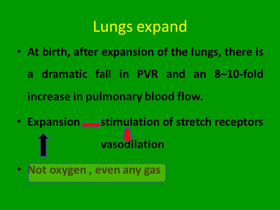 Lungs expand At birth, after expansion of the lungs, there is a dramatic fall in PVR and an 8–10-fold increase in pulmonary blood flow. Expansion stim
