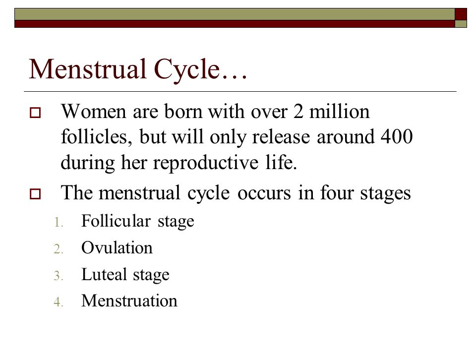 Menstrual Cycle…  Women are born with over 2 million follicles, but will only release around 400 during her reproductive life.  The menstrual cycle