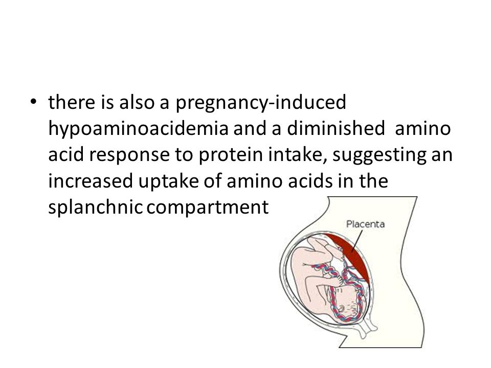 there is also a pregnancy-induced hypoaminoacidemia and a diminished amino acid response to protein intake, suggesting an increased uptake of amino acids in the splanchnic compartment
