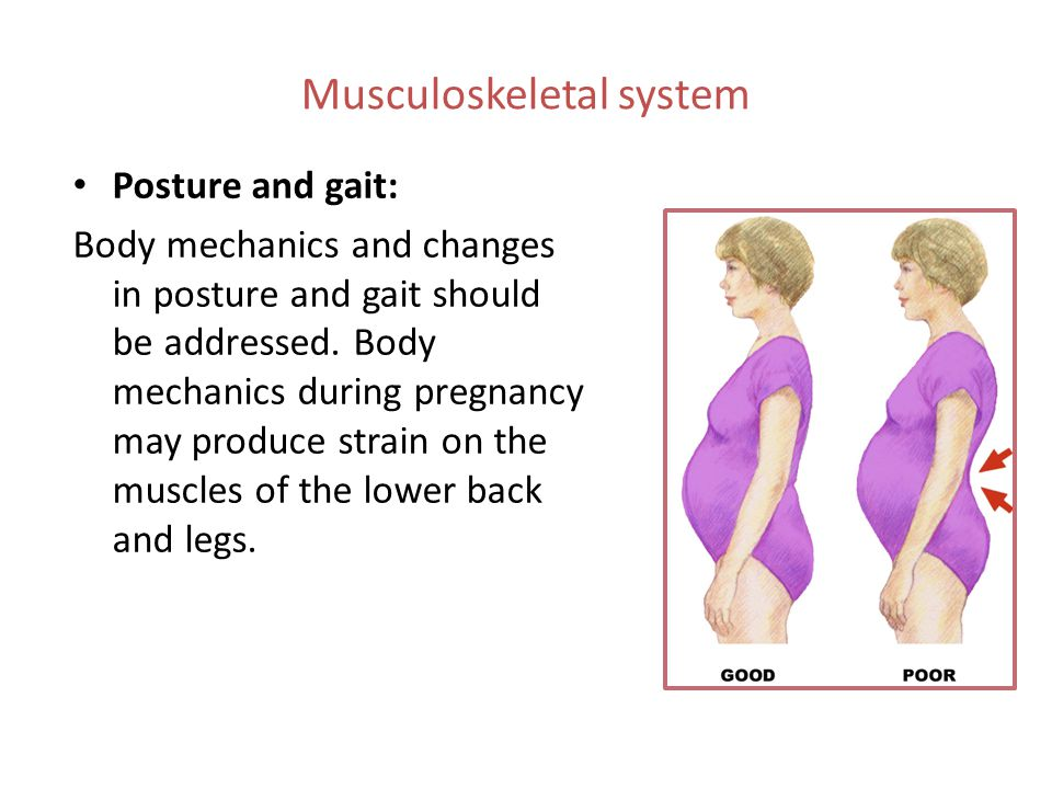 Musculoskeletal system Posture and gait: Body mechanics and changes in posture and gait should be addressed. Body mechanics during pregnancy may produ