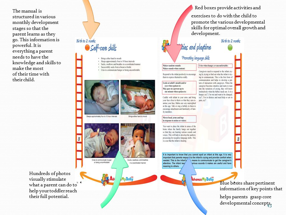43 Blue boxes share pertinent information of key points that helps parents grasp core developmental concepts. Red boxes provide activities and exercis