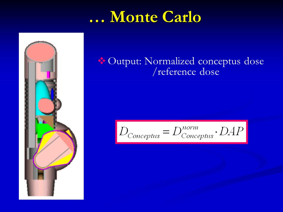… Monte Carlo  Output: Normalized conceptus dose /reference dose