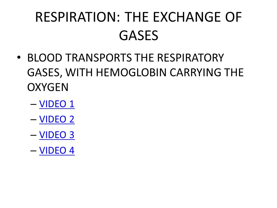 RESPIRATION: THE EXCHANGE OF GASES BLOOD TRANSPORTS THE RESPIRATORY GASES, WITH HEMOGLOBIN CARRYING THE OXYGEN – VIDEO 1 VIDEO 1 – VIDEO 2 VIDEO 2 – VIDEO 3 VIDEO 3 – VIDEO 4 VIDEO 4