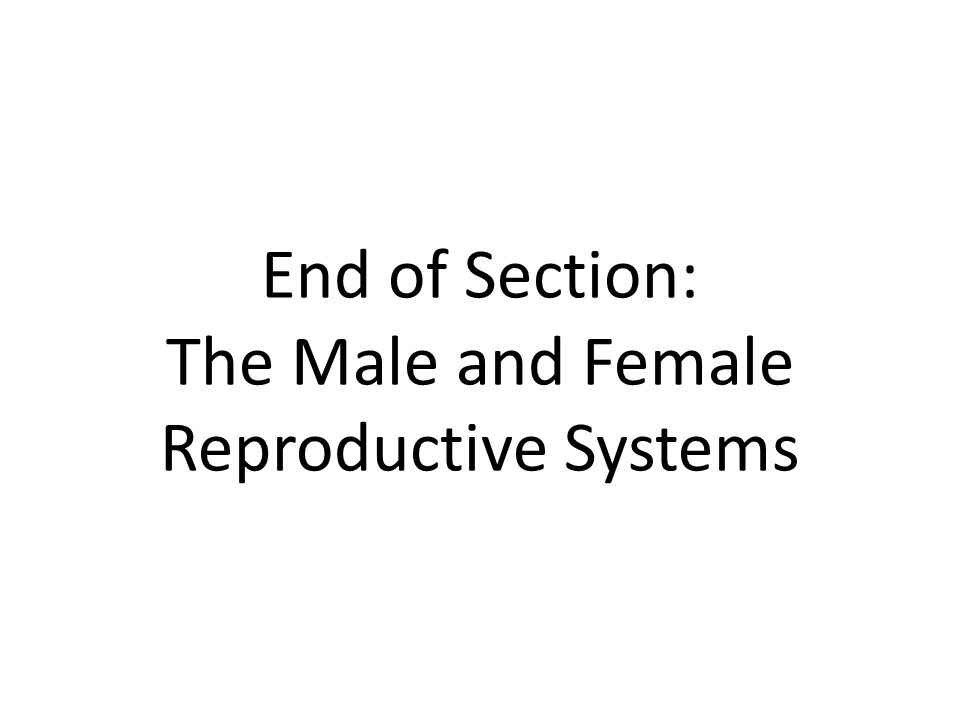 End of Section: The Male and Female Reproductive Systems