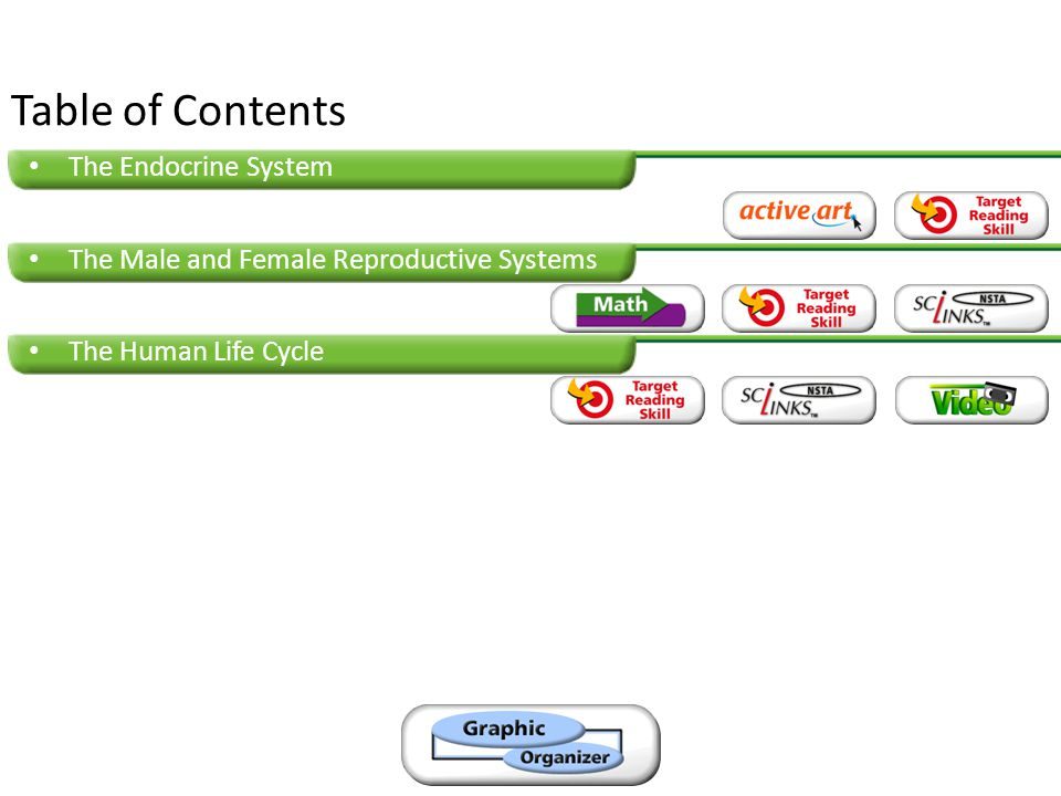 The Endocrine System The Male and Female Reproductive Systems The Human Life Cycle Table of Contents