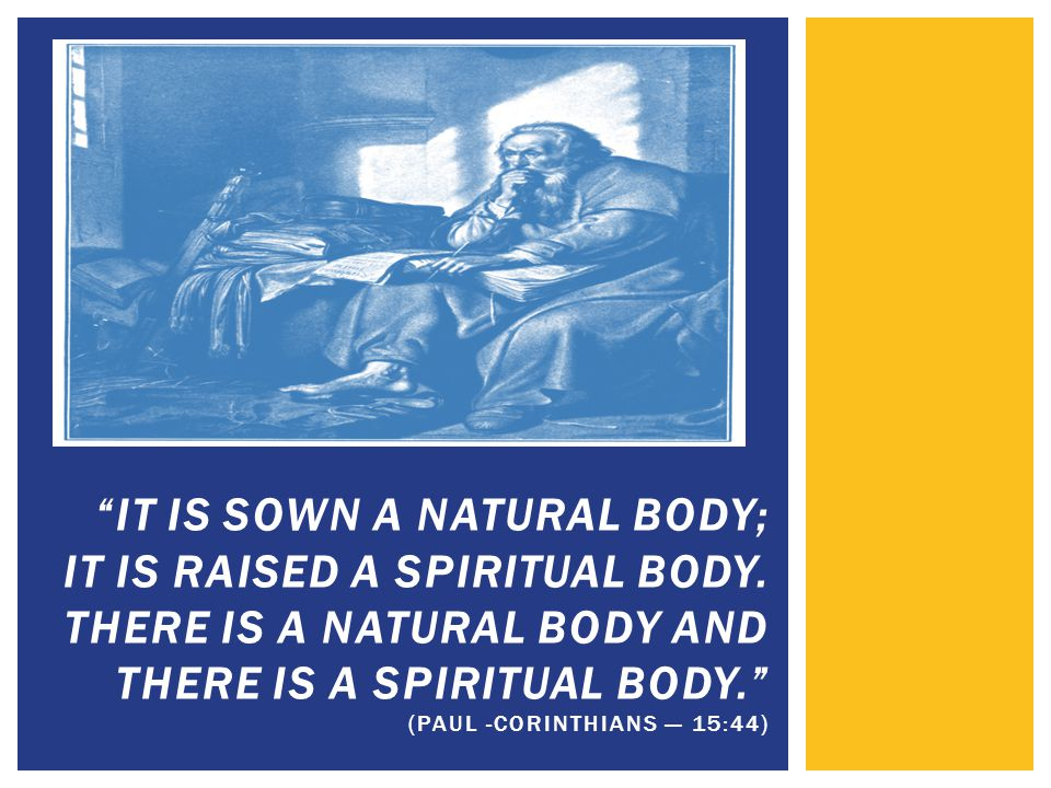  The individualized function allows the perispirit to be the linking element between the Spirit and the physical body.